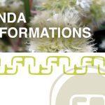 Agenda des formations huiles essentielles