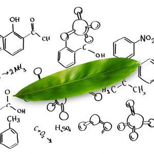 Formation aromathérapie niveau confirmé