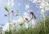 Conseils naturopathiques détoxification