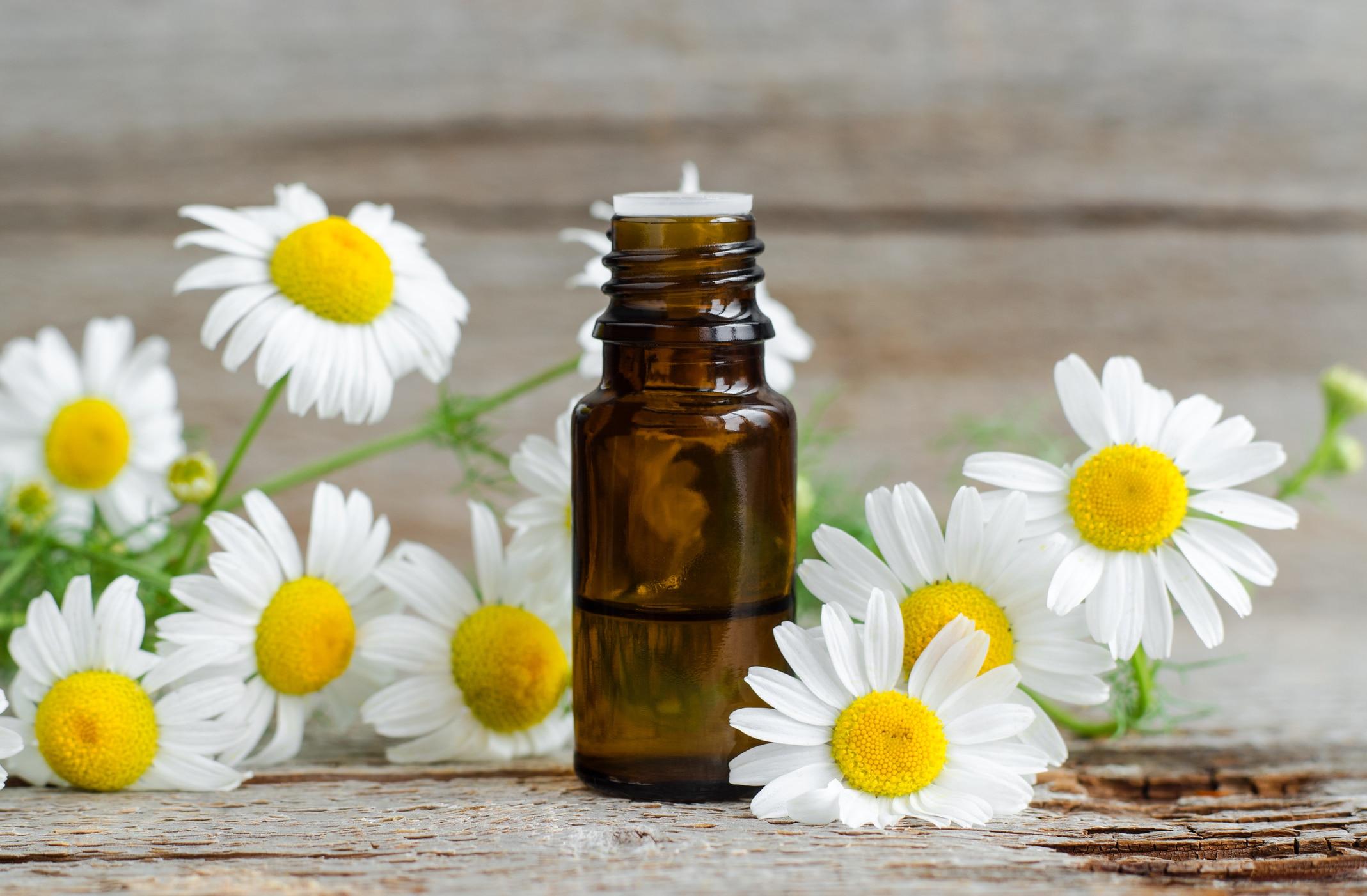Camomille huile essentielle
