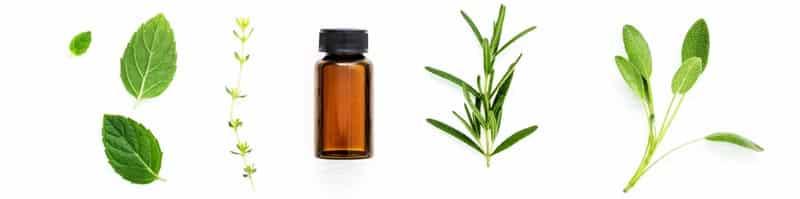 formation-aromatherapie-en-ligne-amsoam